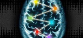 رد نظریه استفاده کردن ۱۰ درصد از مغز